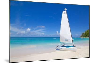 Beach and Hobie Cat, Long Bay, Antigua, Leeward Islands, West Indies, Caribbean, Central America-Frank Fell-Mounted Photographic Print