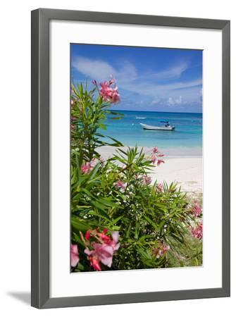 Long Bay and Beach, Antigua, Leeward Islands, West Indies, Caribbean, Central America-Frank Fell-Framed Photographic Print