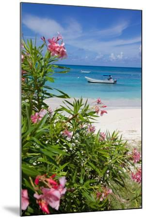 Long Bay and Beach, Antigua, Leeward Islands, West Indies, Caribbean, Central America-Frank Fell-Mounted Photographic Print