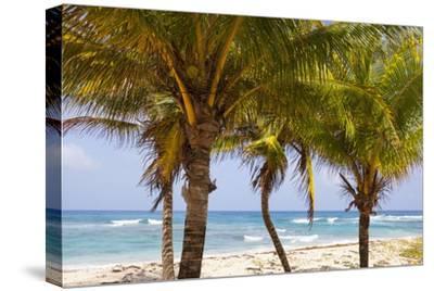 Long Bay, East Coast, Portland Parish, Jamaica, West Indies, Caribbean, Central America-Doug Pearson-Stretched Canvas Print