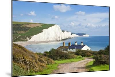 The Seven Sisters Chalk Cliffs and Coastguard Cottages-Neale Clark-Mounted Photographic Print