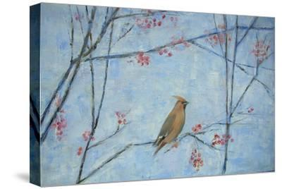 Waxwing, 2013-Ruth Addinall-Stretched Canvas Print