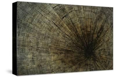 Enmeshed-Kari Taylor-Stretched Canvas Print