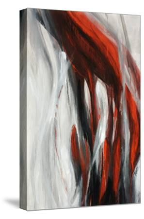 Veil-Farrell Douglass-Stretched Canvas Print