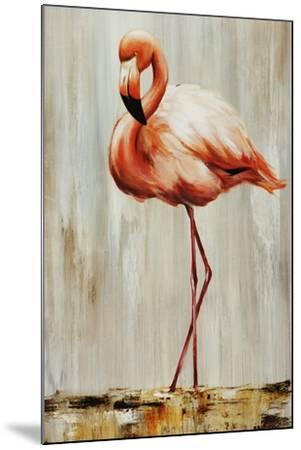 Flamingo IV-Sydney Edmunds-Mounted Giclee Print