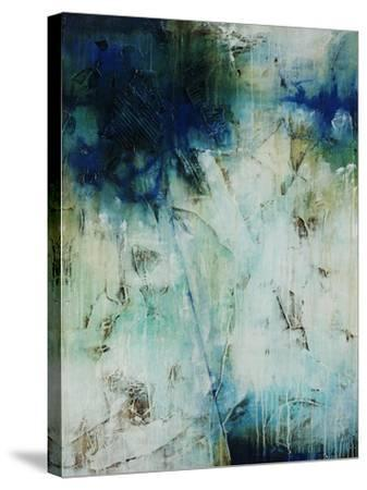 Aerial I-Joshua Schicker-Stretched Canvas Print
