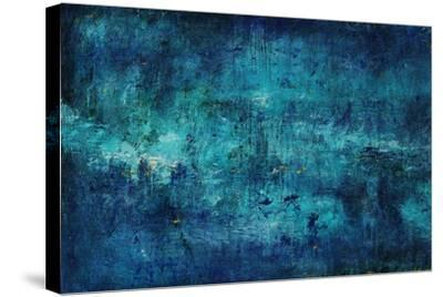 Fountain of Youth-Joshua Schicker-Stretched Canvas Print