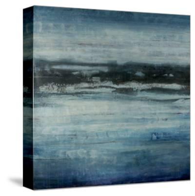 Aquatic Life-Joshua Schicker-Stretched Canvas Print