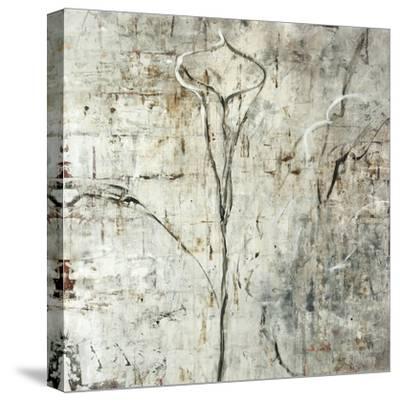 Silver Calla Lily-Jodi Maas-Stretched Canvas Print