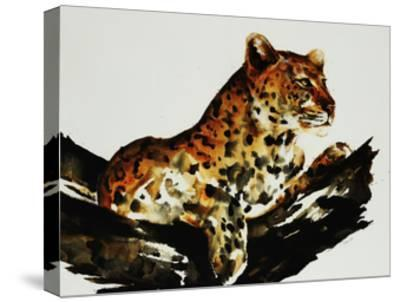 Safari Series I-Sydney Edmunds-Stretched Canvas Print