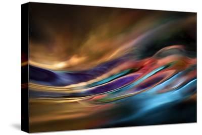 I Dream of Wild Places-Ursula Abresch-Stretched Canvas Print