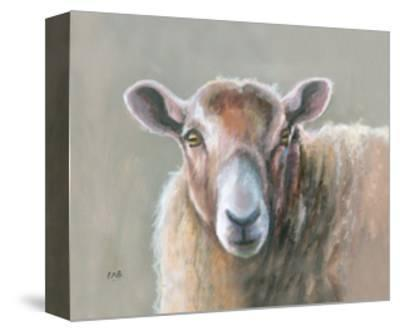 Looking Sheepish-Louise Brown-Stretched Canvas Print