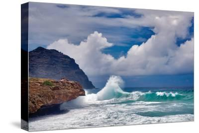 Wave Hello-Dennis Frates-Stretched Canvas Print