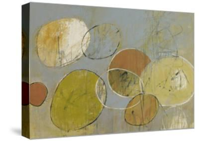 Circle Series 10-Christopher Balder-Stretched Canvas Print