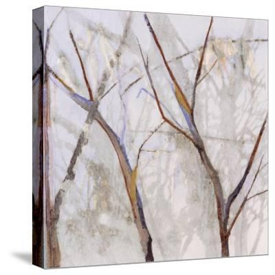 Branches of a Wish Tree A-Danna Harvey-Stretched Canvas Print