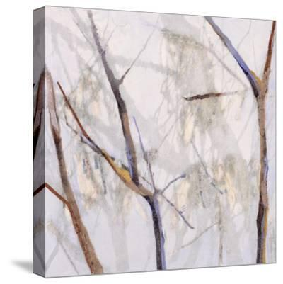 Branches of a Wish Tree D-Danna Harvey-Stretched Canvas Print