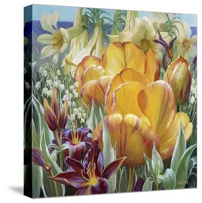 Palisade Garden-Elizabeth Horning-Stretched Canvas Print