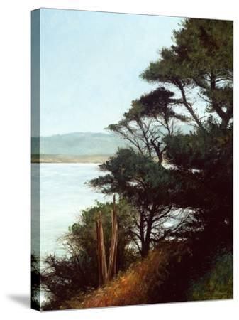 Carmel Bay-Miguel Dominguez-Stretched Canvas Print