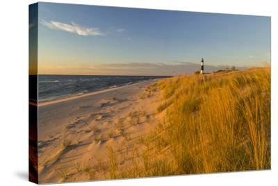Big Sable Point Lighthouse on Lake Michigan, Ludington SP, Michigan-Chuck Haney-Stretched Canvas Print