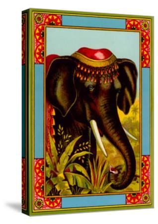 Indian Elephant with Beanie--Stretched Canvas Print