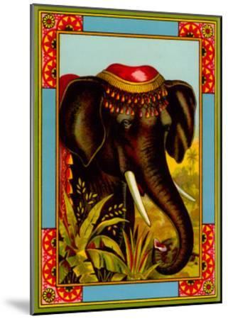 Indian Elephant with Beanie--Mounted Art Print