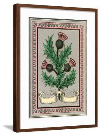 Thistle--Framed Art Print