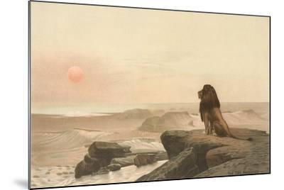 Lion Watching Sunset--Mounted Art Print