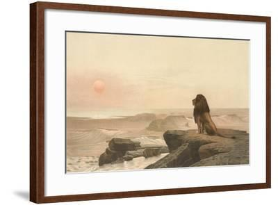 Lion Watching Sunset--Framed Art Print