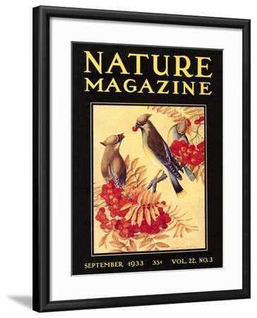 Nature Magazine Cover, Birds--Framed Art Print