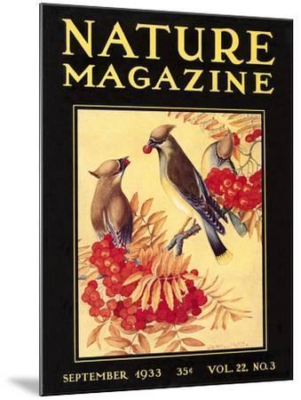 Nature Magazine Cover, Birds--Mounted Art Print