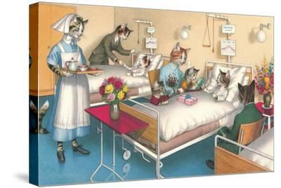 Cats in the Hospital--Stretched Canvas Print