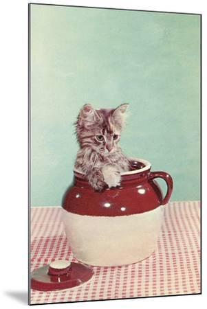 Kitten in a Jug--Mounted Art Print