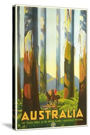 Australia Travel Poster, Trees--Stretched Canvas Print