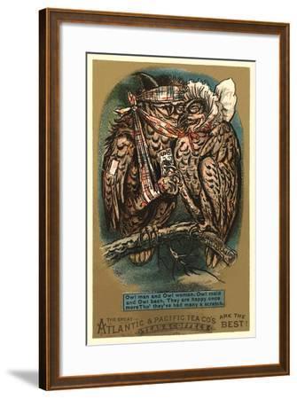 Battered Owl Couple--Framed Art Print