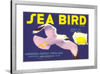 Sea Bird Lemon Label--Framed Art Print