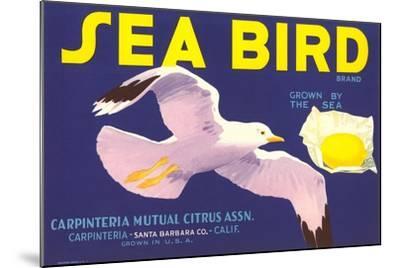 Sea Bird Lemon Label--Mounted Art Print