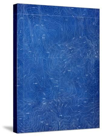 Topographical Blueprint Pattern-yobro-Stretched Canvas Print