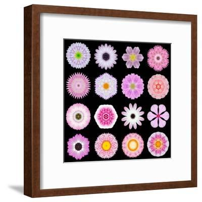Big Collection of Various Pink Pattern Flowers-tr3gi-Framed Art Print