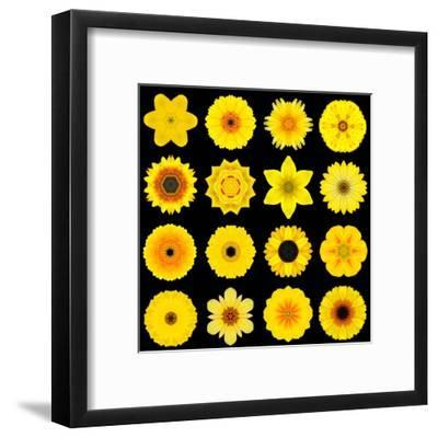 Big Collection of Various Yellow Pattern Flowers-tr3gi-Framed Art Print