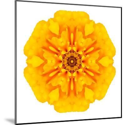 Yellow Concentric Marigold Mandala Flower-tr3gi-Mounted Art Print