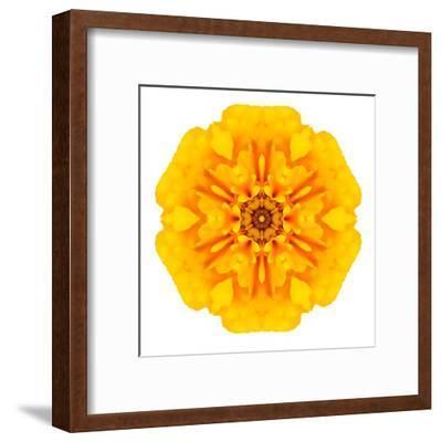 Yellow Concentric Marigold Mandala Flower-tr3gi-Framed Art Print