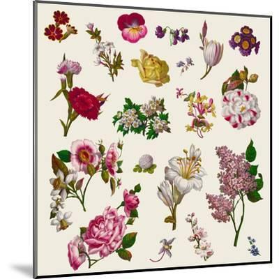 Vintage Victorian Flowers Clip Art-Karimala-Mounted Art Print