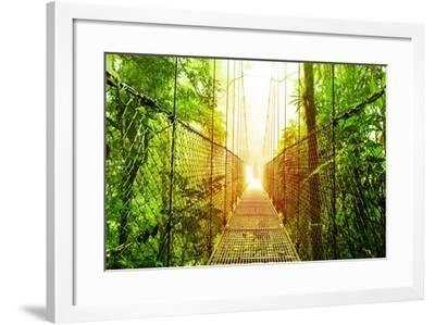 Picture of Arenal Hanging Bridges Ecological Reserve, Natural Rainforest Park-Anna Omelchenko-Framed Art Print