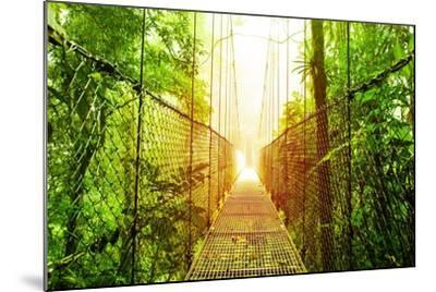 Picture of Arenal Hanging Bridges Ecological Reserve, Natural Rainforest Park-Anna Omelchenko-Mounted Art Print