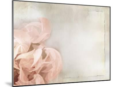 Flower Background in Light Vintage Style on Torn Old Paper Sheet-one AND only-Mounted Art Print