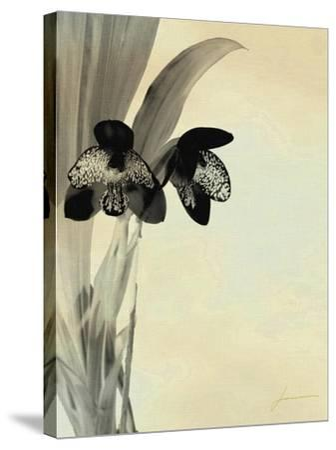 Orchid Blush Panels I-James Burghardt-Stretched Canvas Print
