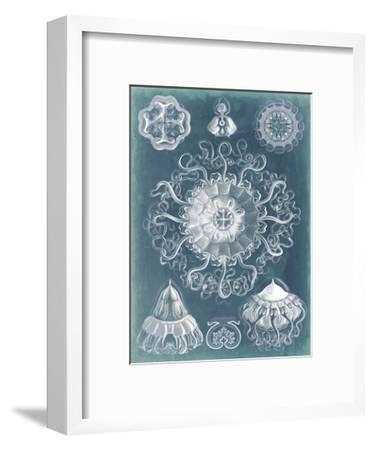 Sealife Blueprint II-Vision Studio-Framed Art Print