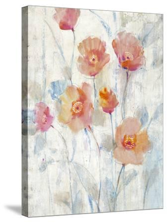 Translucent II-Tim O'toole-Stretched Canvas Print