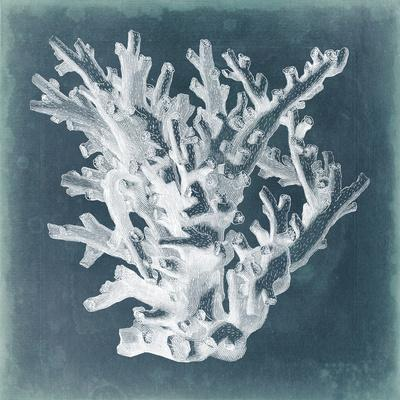 Azure Coral I-Vision Studio-Art Print