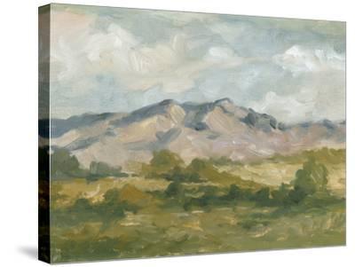 Impasto Landscape I-Ethan Harper-Stretched Canvas Print